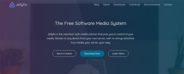 Is jellyfin best Media Server Competitors?