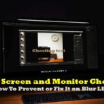 Monitor Ghosting